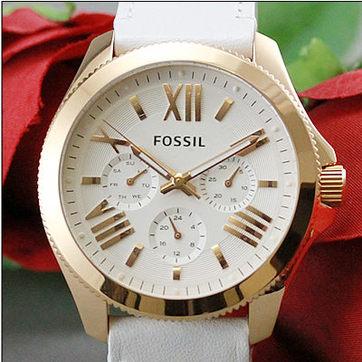 Fossil AM4486